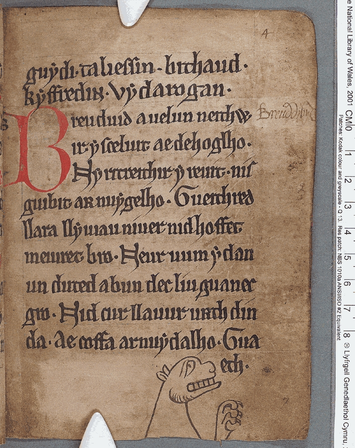 a medieval manuscript with old font and a drawing of a dragon head at the bottom